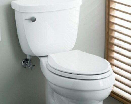 How Many Gallons of Water It Takes To Flush The Toilet?