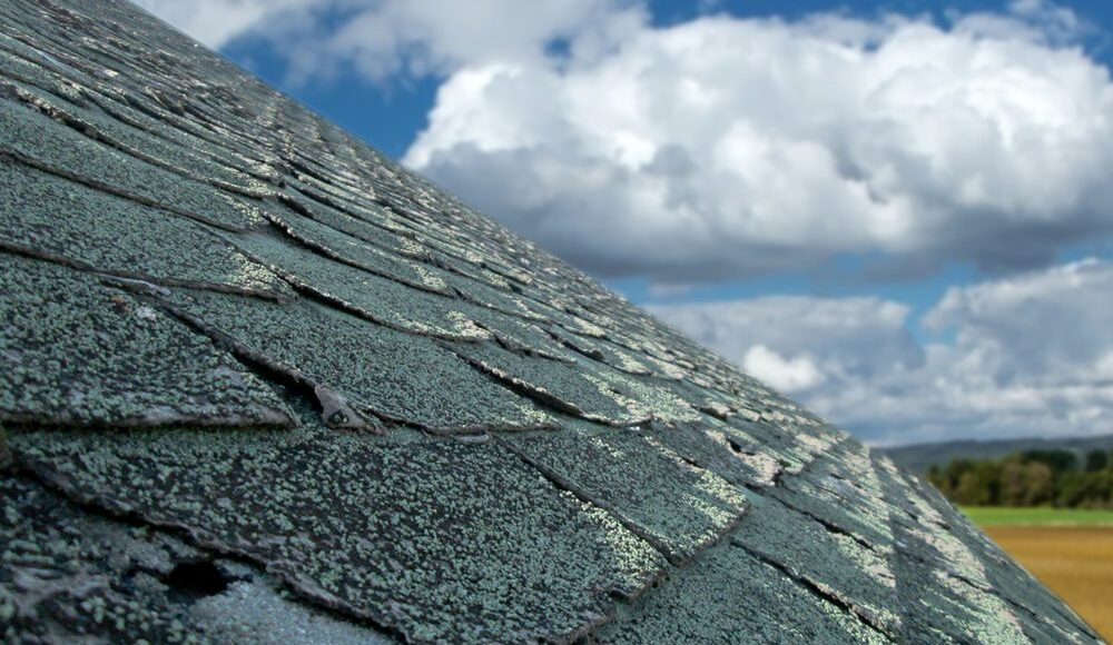 Common Signs You Need a New Roof