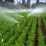 4 Benefits of Having an Irrigation System