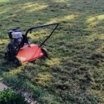In Over Your Head? 6 Pro Tips for Overseeding Your Lawn